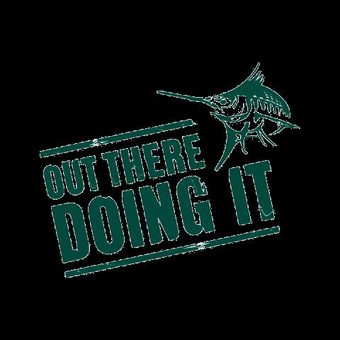 Summer Catalogue 2017